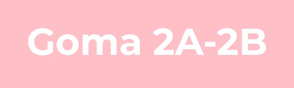 Goma 2A-2B
