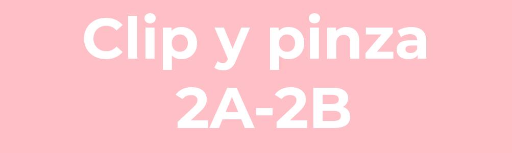 Clip y pinza 2A-2B